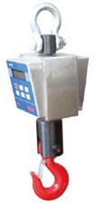 EX1,2,3T防爆型電子吊秤