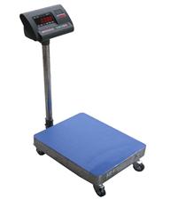 TZH-G50公斤可移动电子台秤