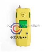 LBT-CYT25/1000/B泵吸式一氧化碳、氧气二合一检测仪