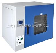 DHG-9145A300度恒温鼓风干燥箱 高温烘箱 实验室烤箱