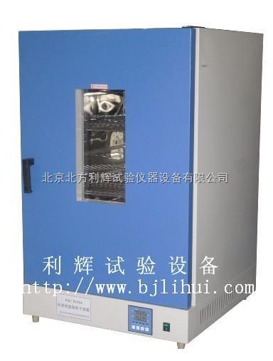 DGG-9030A/DGG-9030AD立式小型干燥箱