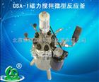 北京GSA-1磁力搅拌微型反应釜