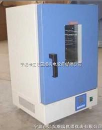 电热恒温鼓风干燥箱(立式)