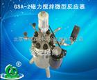 昆明GSA-2磁力搅拌微型反应器