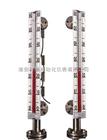 防腐远传型磁翻板液位计/液位仪表系列