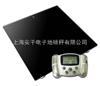 电子地磅秤1000kg_上海电子地磅秤