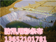 大量供应聚乙烯彩条布=天津草坪防晒彩条布