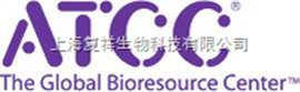 ATCC 43079 马链球菌兽瘟亚种