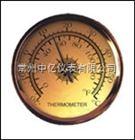 WS-40W指针式温湿度计