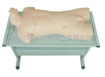 TK-819肝膿腫穿刺與胸腔穿刺訓練模型