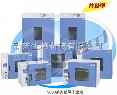 上海一恒鼓风干燥箱DHG-9055A