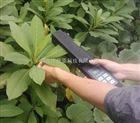 活体叶面积仪、叶面积测量仪