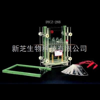北京六一夹芯式垂直槽DYCZ-28B/夹芯式垂直槽/编号:121-2820现货
