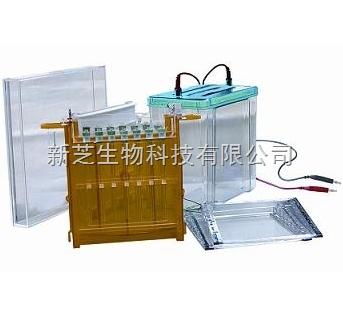 北京六一双向电泳槽DYCZ-26C/电泳仪/聚碳酸脂注塑成型现货销售