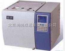 气相色谱仪(B型)