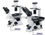 奥林巴斯CKX31/CKX41倒置显微镜
