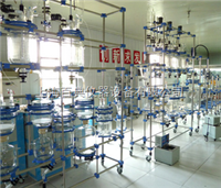 多功能反应装置玻璃多功能反应装置