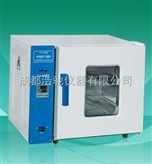 101-0A电热干燥箱101-0A