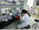 病毒构建相关试剂产品