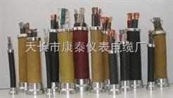 ZR-BPYJVP2P阻燃變頻電纜