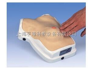 新临床乳房检查训练模型