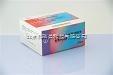 EB病毒IgM快速检测试剂盒
