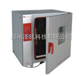BGZ-246化验室电热鼓风干燥箱/鼓风干燥箱*