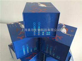 猪水泡病毒抗体ELISA试剂盒