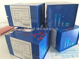 猪囊虫抗原ELISA试剂盒