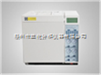 气体分析色谱仪厂家