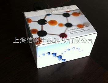 上海大鼠白介素1β (IL-1β) ELISA试剂盒