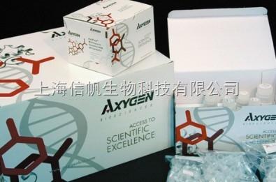 人克拉拉细胞蛋白(CC16) ELISA试剂盒精灵敏度高,免除您的实验后顾之忧