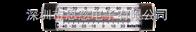29006冰箱温度计 冷柜温度计 温度测量仪 美国DeltaTRAK