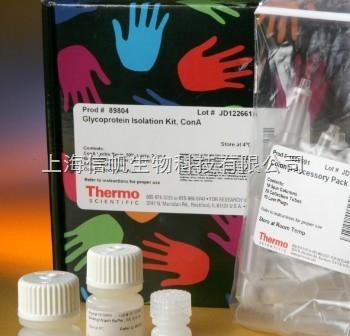 人溶菌酶(LYS) ELISA试剂盒精灵敏度高,提供技术指导,免除您的实验后顾之忧