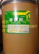 药用级黄原胶 厂家专供  25kg