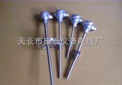 铠装热电阻WZPK-365S