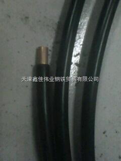 蚌埠包塑紫铜管,覆塑紫铜管,塑覆紫铜管价格