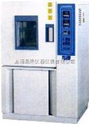 MS-010 霉菌试验箱