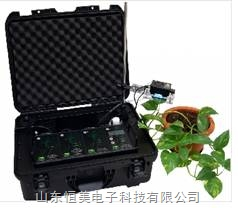 光合作用/呼吸测量系统