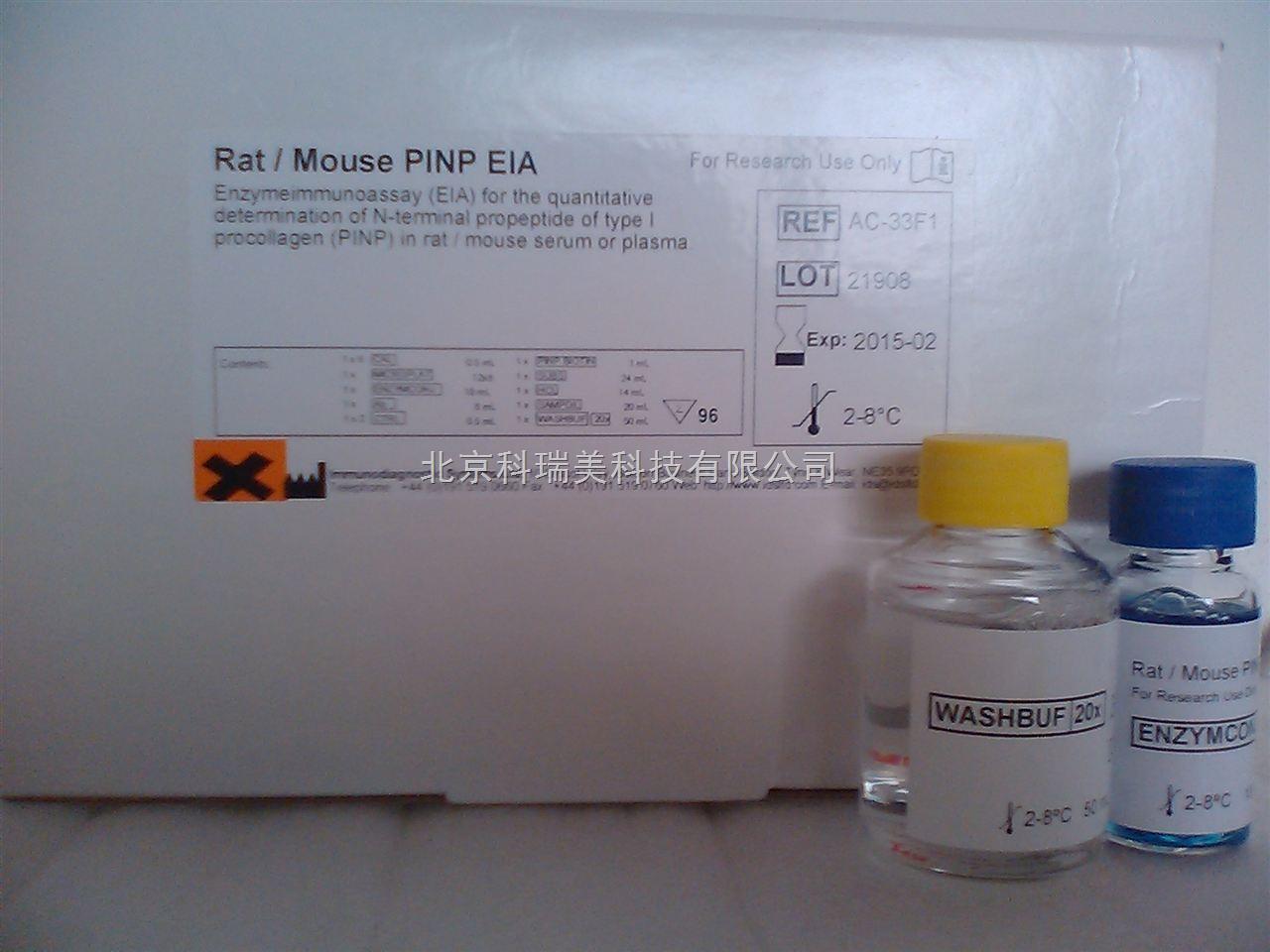 Rat/Mouse PINP ELISA  Kit