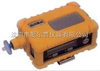 MultiRAE IRRAE华瑞五合一气体检测仪MultiRAE IR