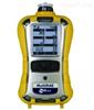 MultiRAE 2六合一气体检测仪