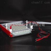 快速凝胶电泳仪DYCP-44P型
