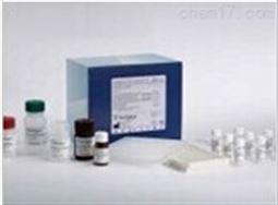大鼠胰岛素自身抗体(IAA)检测试剂盒
