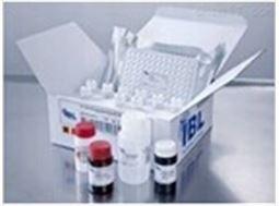 大鼠BH3相互作用域死亡激动剂(Bid)检测试剂盒