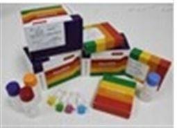 大鼠低密度脂蛋白(LDL)检测试剂盒