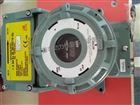 日本理研泵吸式在线挥发性有机气体检测仪