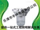 NFC9180-J150防眩泛光灯/丰绅NFC9180防眩泛光灯