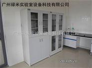广东生产全钢药品柜品牌 禄米实验室设备