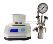 上海实验室反应釜厂家